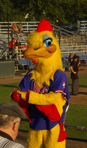 """Cluck"", the Bellingham Bells mascot"